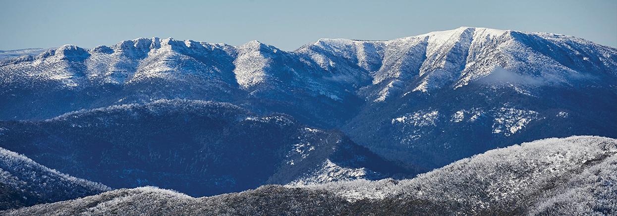 Buller Holidays Mt Buller